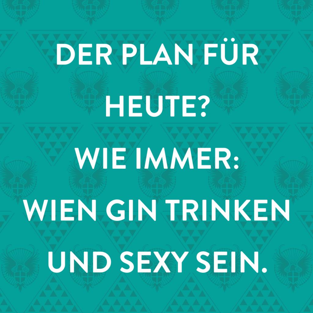 Wien Gin Social Case